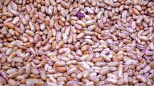 Eat Beans and Poultry To Lose Belly Fat